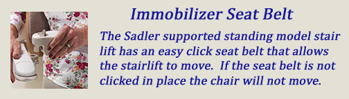 Immobilizer Seat Belt